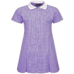 Purple Gingham Zip Summer Dress