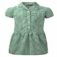 Green Plain Gingham Dress Button Front