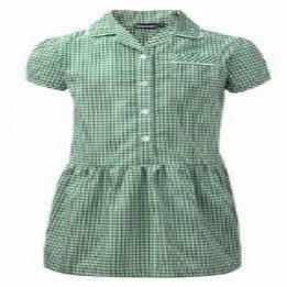 Green Gingham Dress Button Front