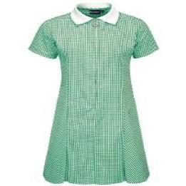 Green Plain Gingham Zip Summer Dress