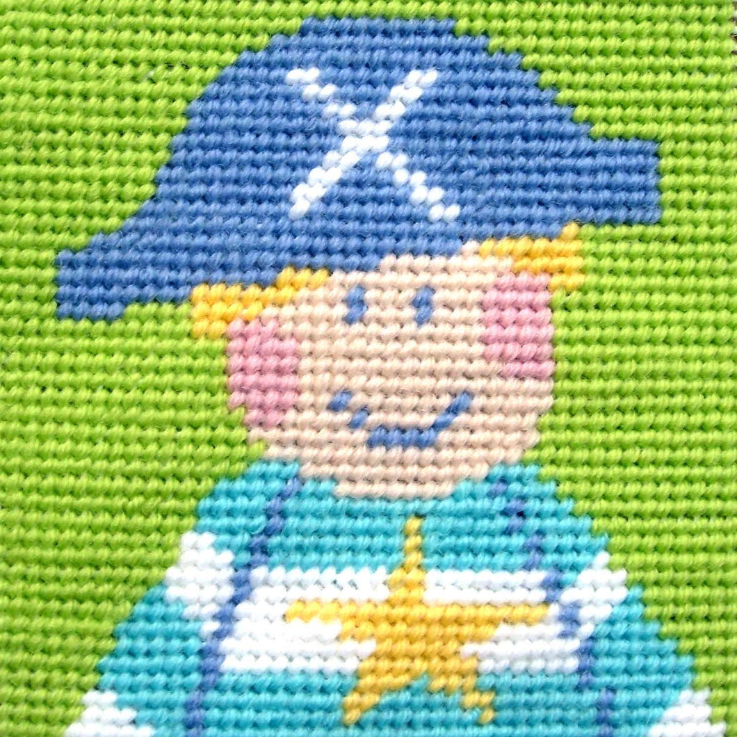 Pirate Needlepoint Kit