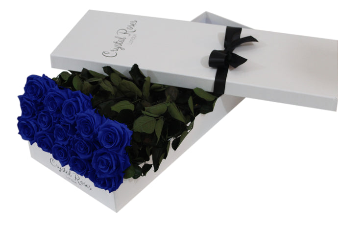 15 Royal Blue Preserved Roses - White Box - Crystal Roses London