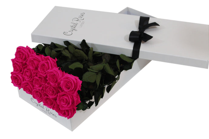 15 Fuschia Pink Preserved Roses - White Box - Crystal Roses London
