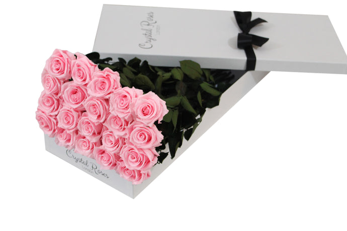 20 Pink Preserved Roses Gift Box Roses, One Year Pink Long Stem Roses, Long Stem Preserved Roses in a gift box, long stem Pink preserved roses in a white gift box - Crystal Roses London