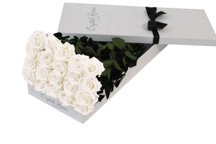 20 White Preserved Roses - White Box