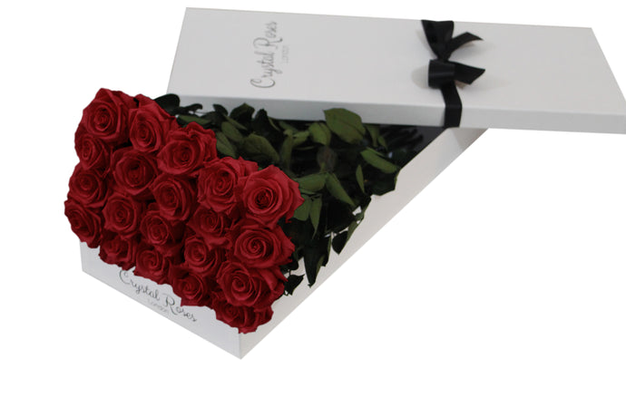 20 Red Preserved Roses Gift Box Roses, One Year Red Long Stem Roses, Long Stem Preserved Roses in a gift box, long stem Red preserved roses in a white gift box - Crystal Roses London