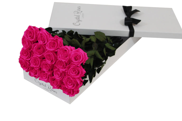 20 Fuschia Pink Preserved Roses - White Box