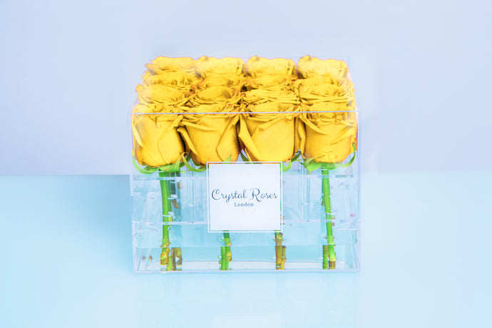 Small Acrylic Box - Fresh Cut Yellow Roses