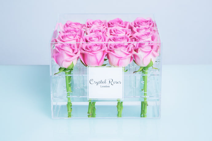 Small Acrylic Box - Fresh Cut Pink Roses