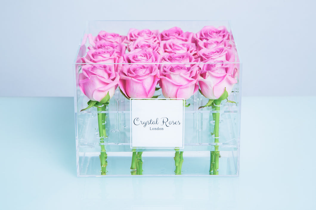 Small Acrylic Box - Preserved (One Year) Pink Roses