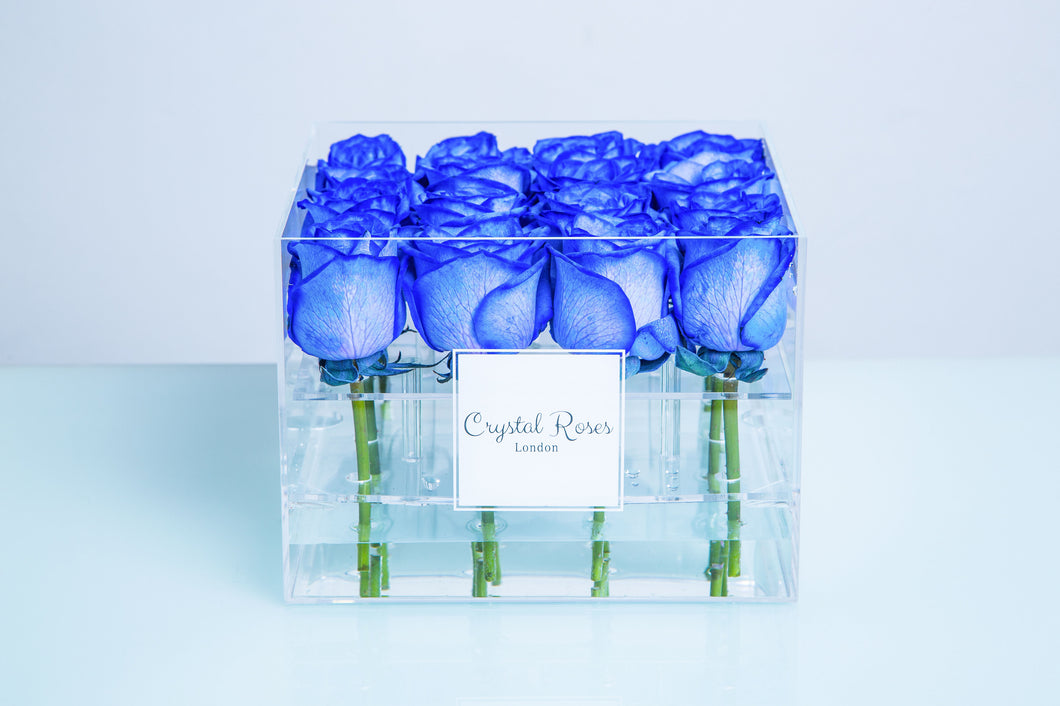 Small Acrylic Box - Preserved (One Year) Blue Roses