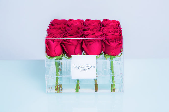 Small Acrylic Box - Fresh Cut Fuchsia Pink Roses