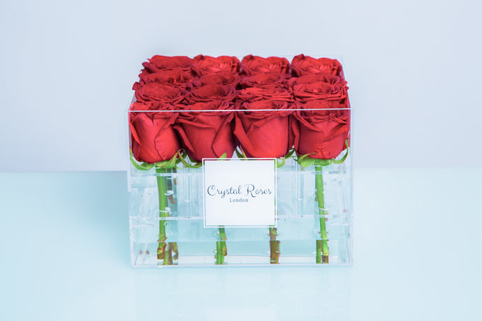 Small Acrylic Box - Fresh Cut Red Roses