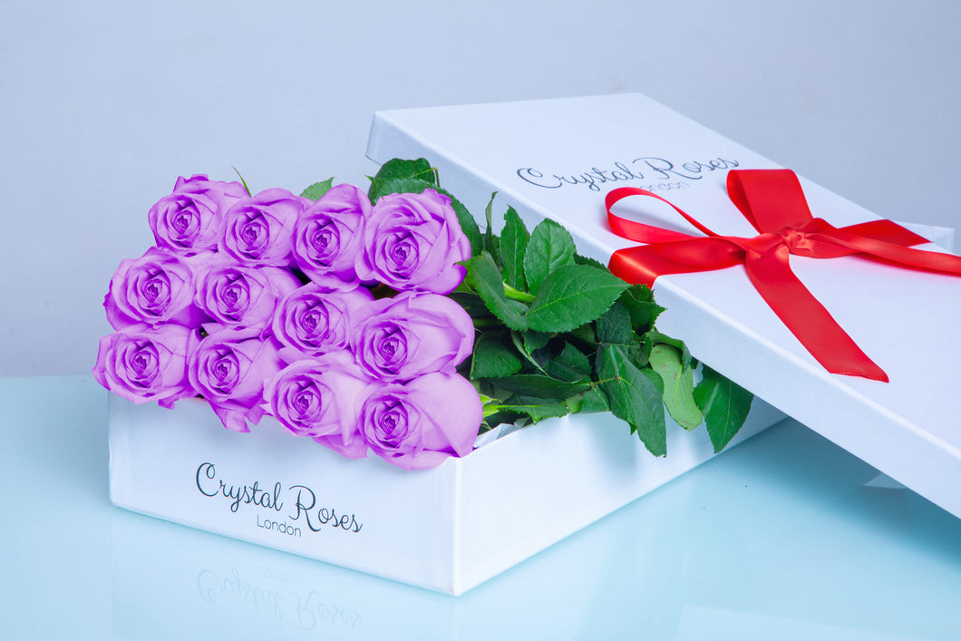 12 Fresh Cut Purple Roses, Gift Box Roses, 12 Long Stem Purple Roses, 12 Purple Gift Box Roses - Crystal Roses London