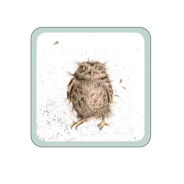 Royal Worcester Wrendale Owl Coaster 10.5cm By 10.5cm (Set Of 8)