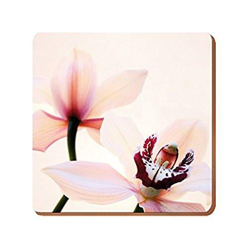 Creative Tops Elegant Orchid Square Placemats 29cm (Set of 4)