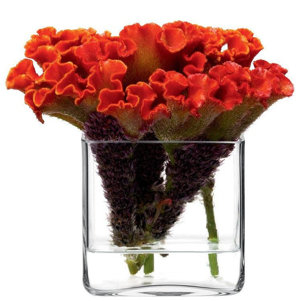 LSA Cube Clear Vase 8Cm (Slight Chips)