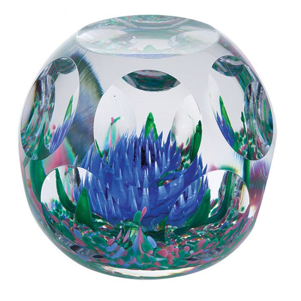 Caithness Glass Bold And Beautiful Rhapsody Blue Paperweight