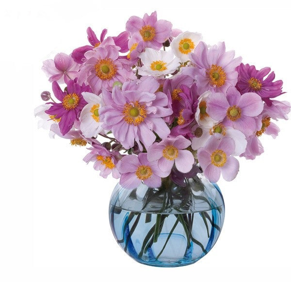 Dartington Crystal Florabundance Colours Anemone Aqua Vase