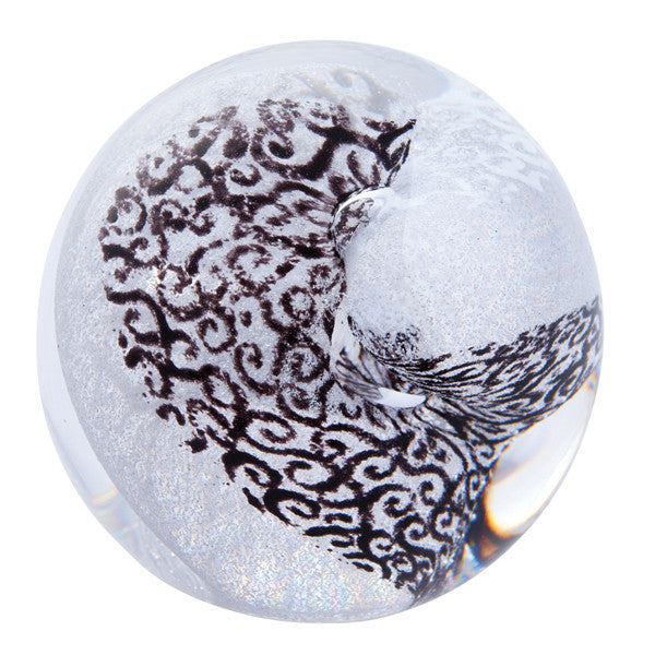 Caithness Glass Unlimited Black And White Paperweight