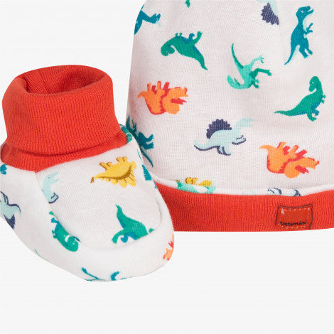 Bonnet and booties set in dinosaur print