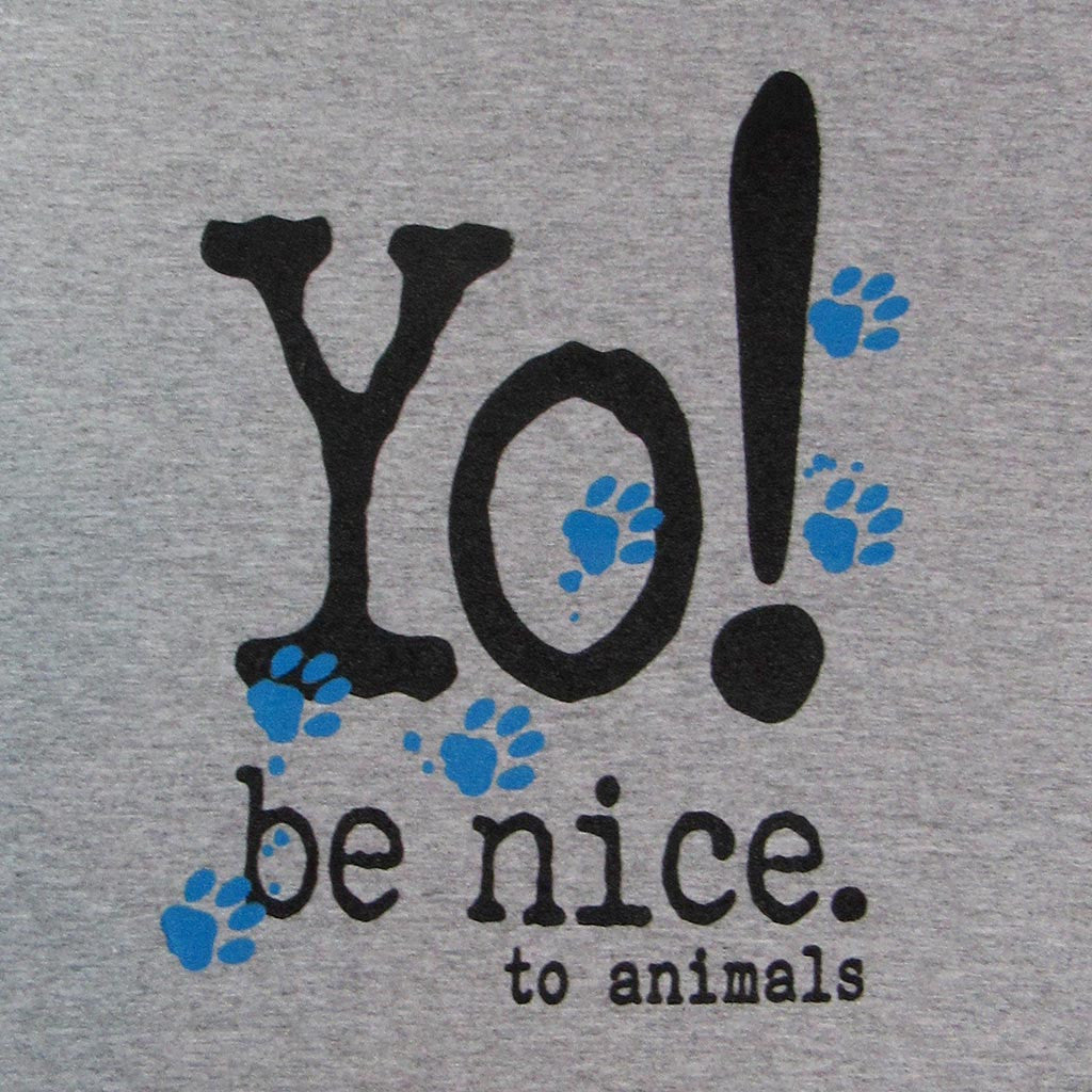 Women's V-neck t-shirt | be nice to animals