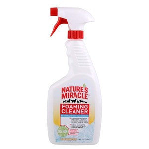 FOAMING CLEANER LEMON ORCHARD SCENT 24OZ