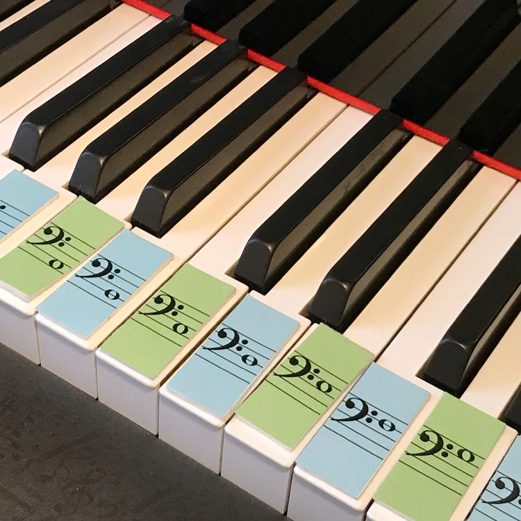 Teeny Tiny Flashcards by Anne Crosby Gaudet at Music Discoveries. Practice bass clef line and space notes.