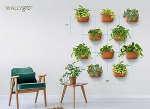 Ways to Style the Full Plant Look: 10 Eco Spacing Guide & Inspo