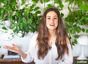Alli Cherry's Easy to Install Living Plant Wall for Loft & Apartment
