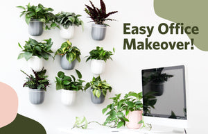 Easy Office Makeover!