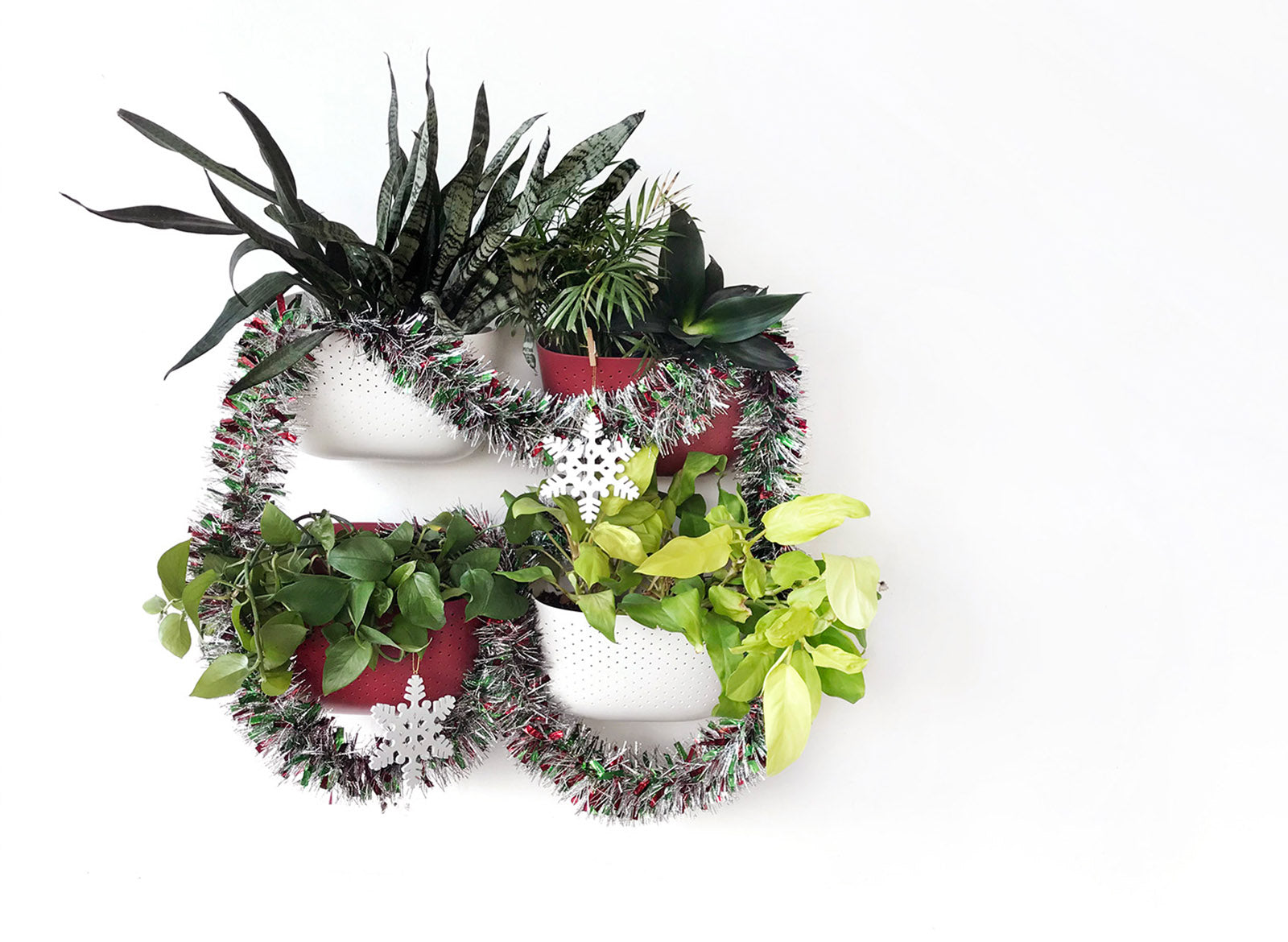 5 Ways To Decorate Your Plant Wall for the Holidays