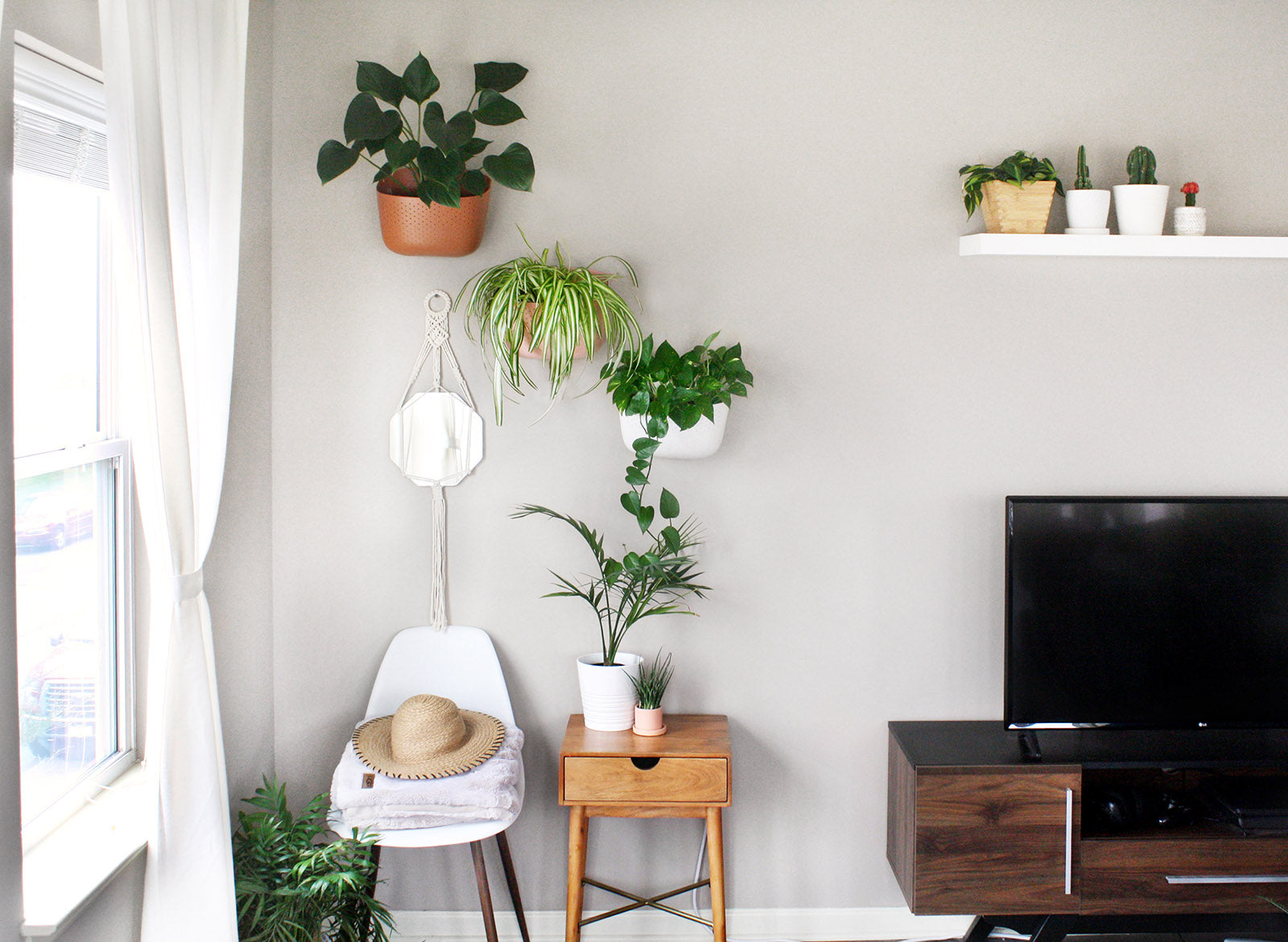 Mix-and-Match Plant Styling Tips: One Space, 6 Themes