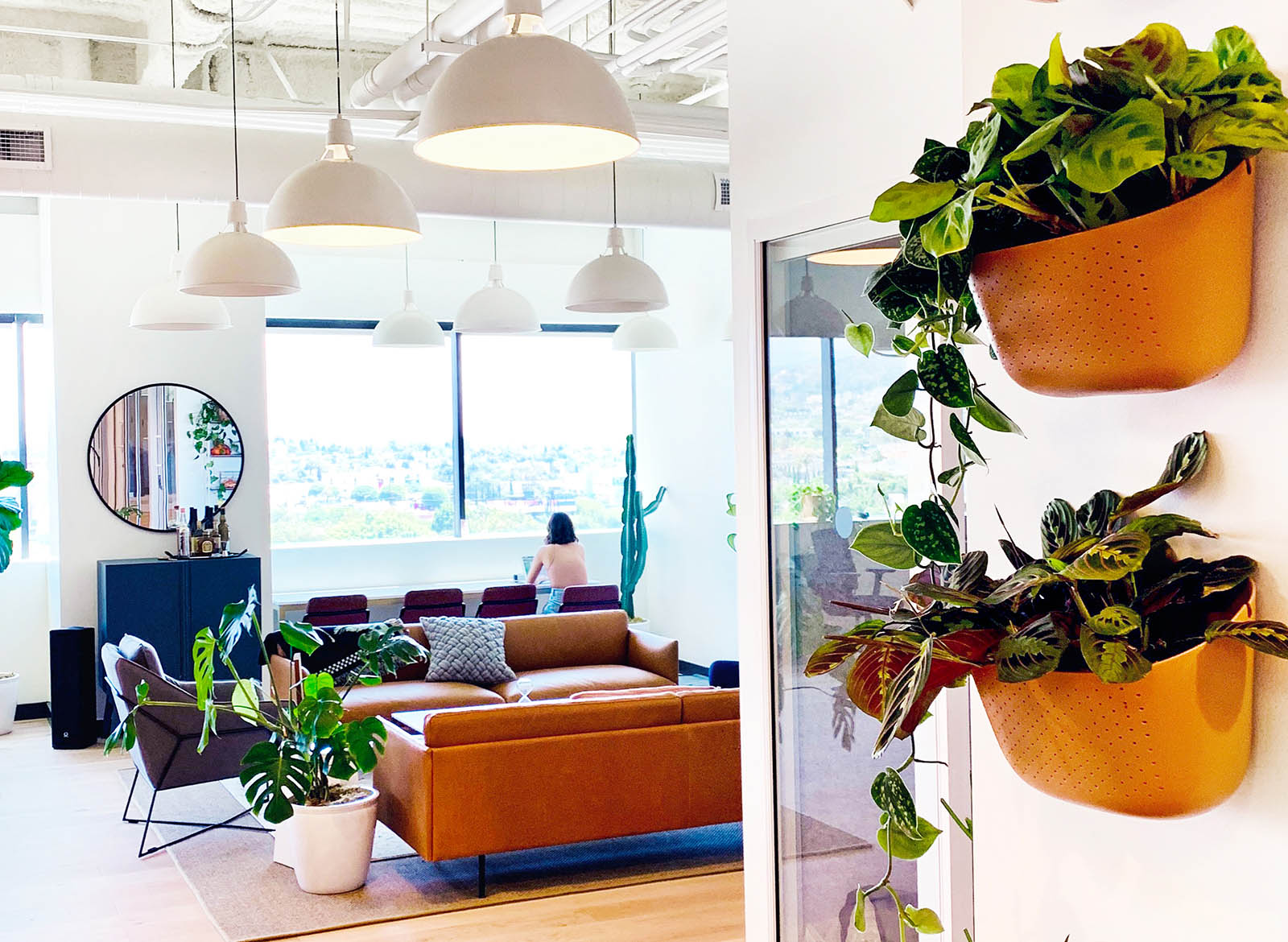 Why You Should Add Plants To Your Workspace