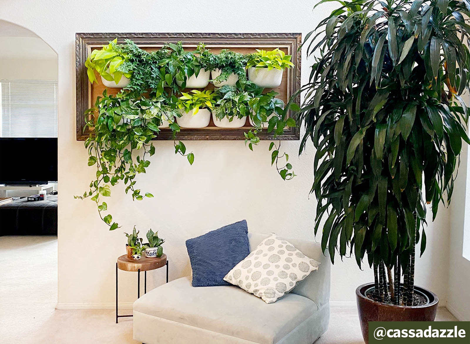 Creating an Upcycled Frame for Your Vertical Garden with @cassadazzle