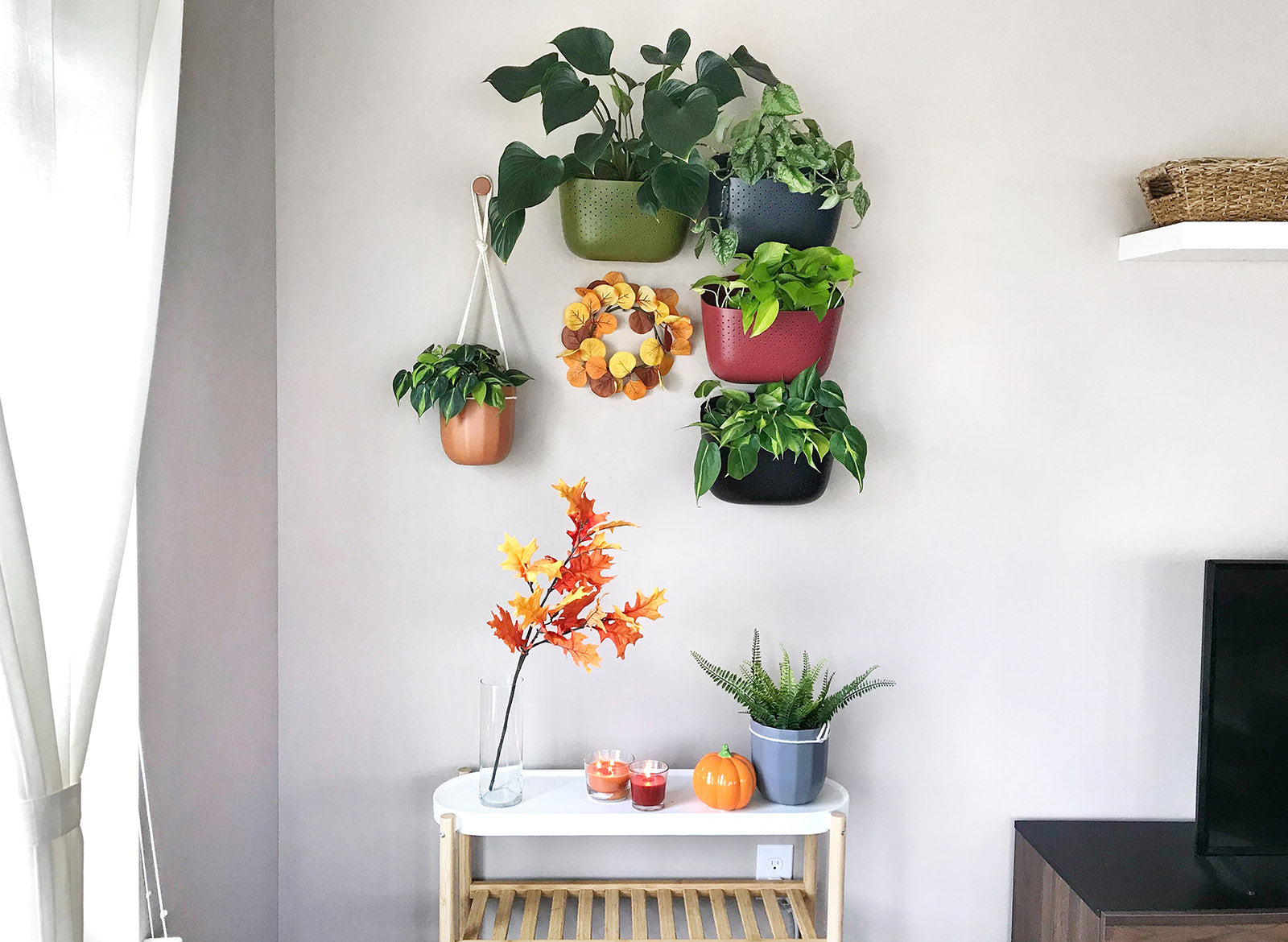 Five Easy Ways to Decorate Your House For Fall (With Plants)