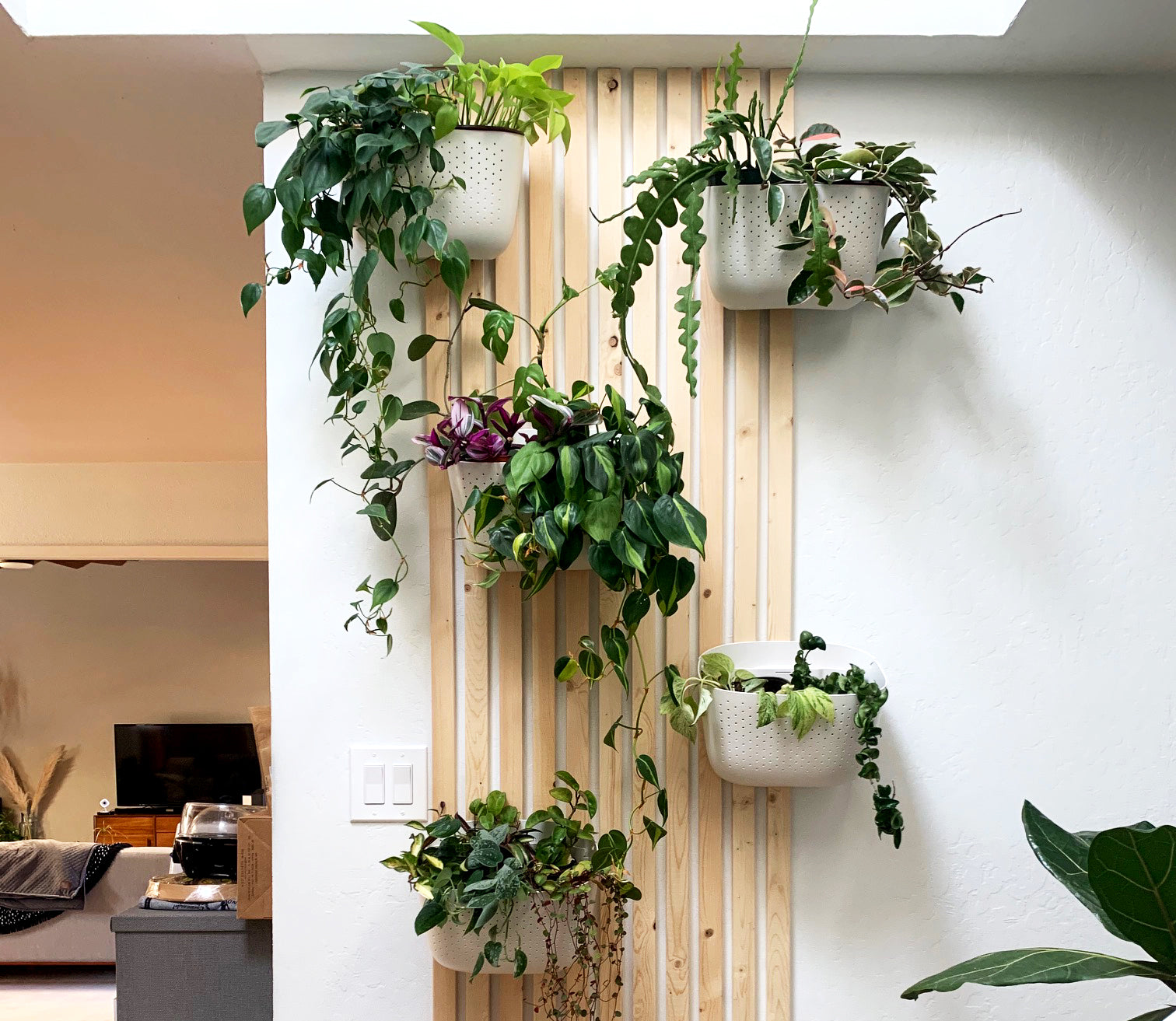 How-to: DIY Mid-Century Style Slatted Plant Wall