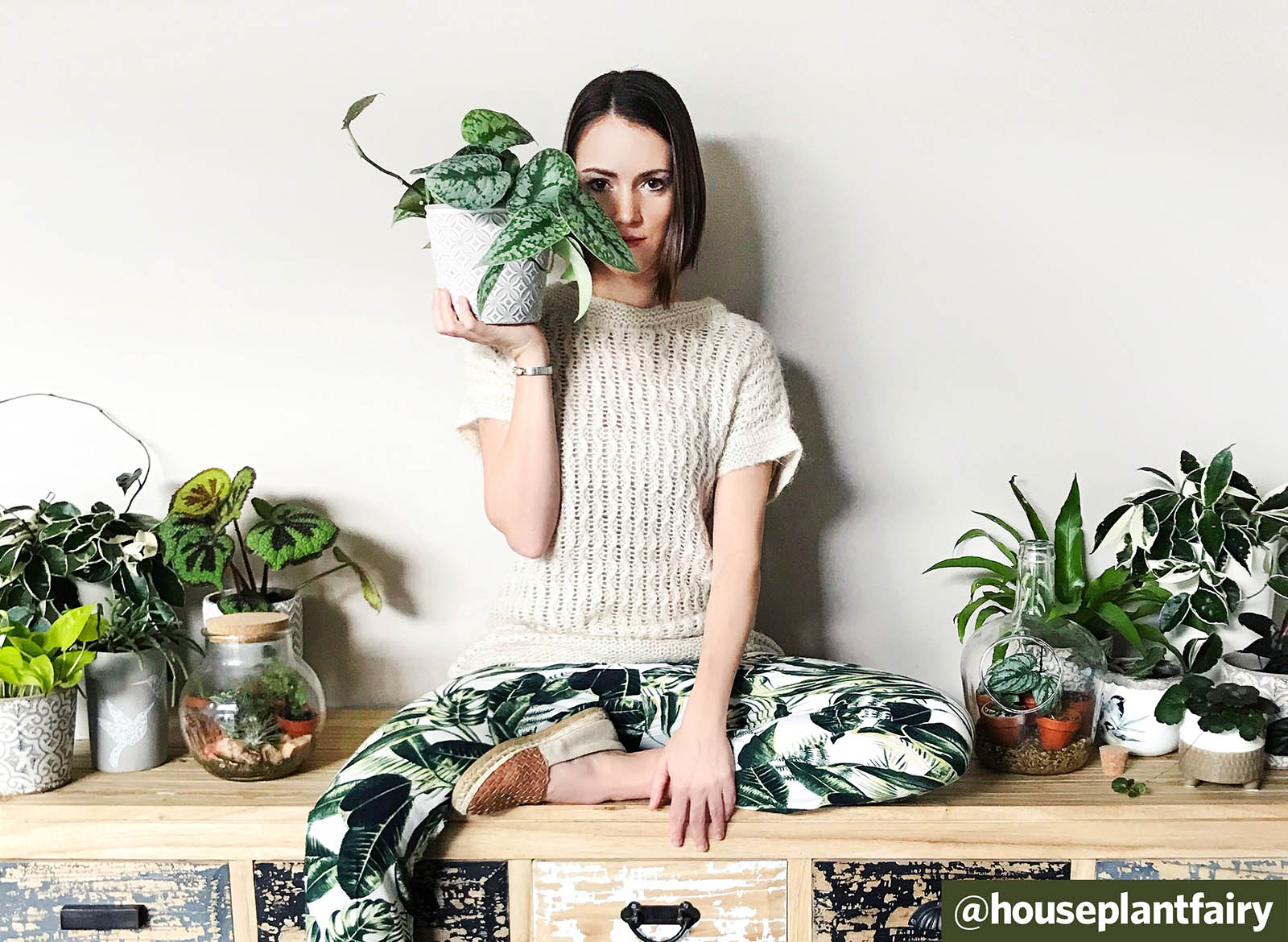 Q&A: Plant Love in Austria with @houseplantfairy