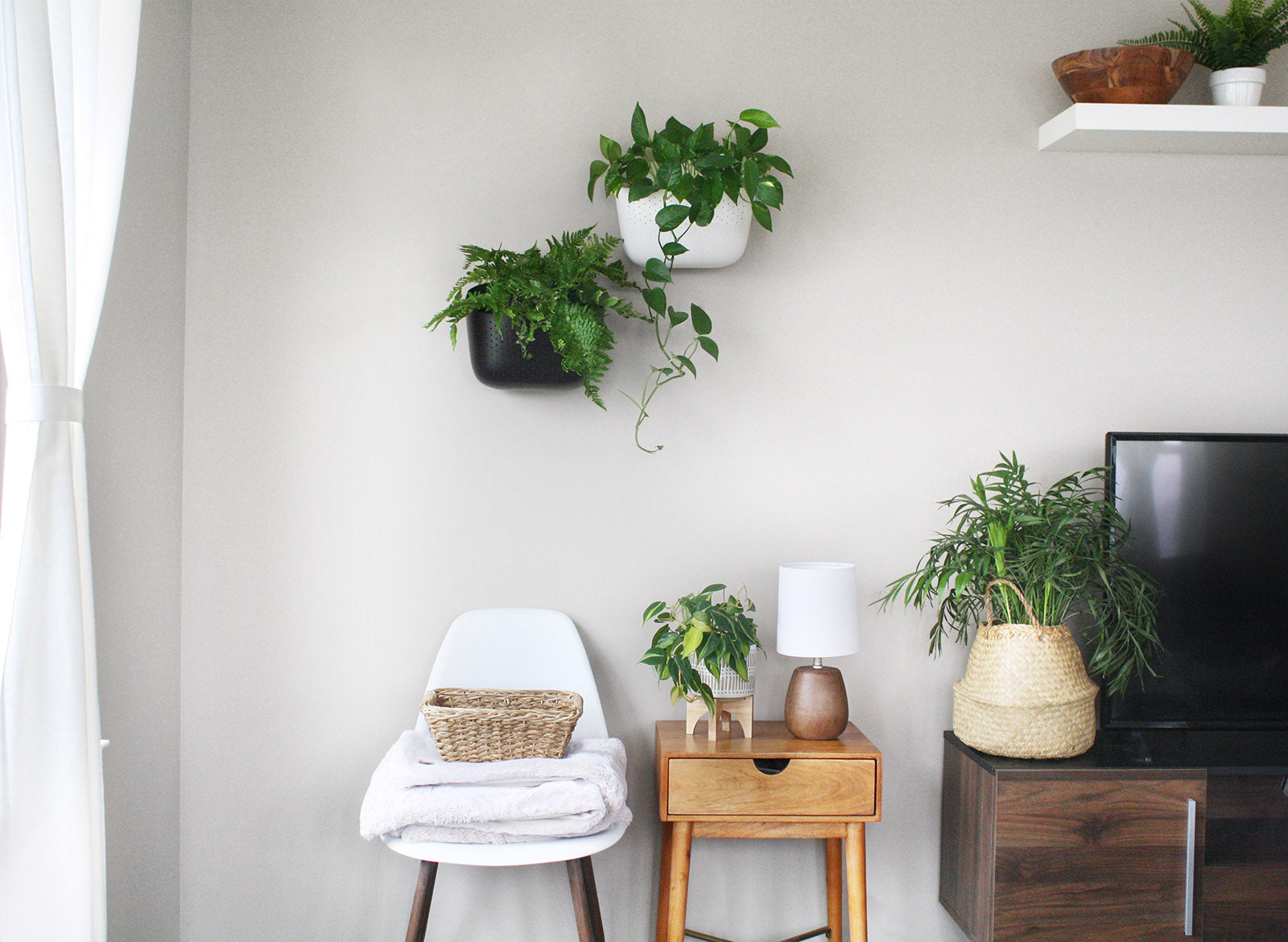 Mix and Match Plant Styling Tips: One Space, 6 MORE Themes