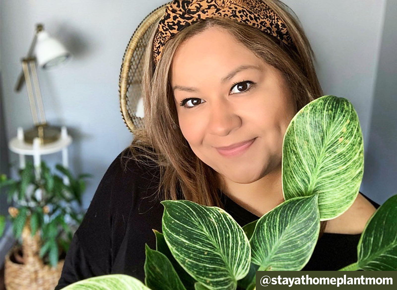 Q&A: That Plant Hoarding Life with @stayathomeplantmom