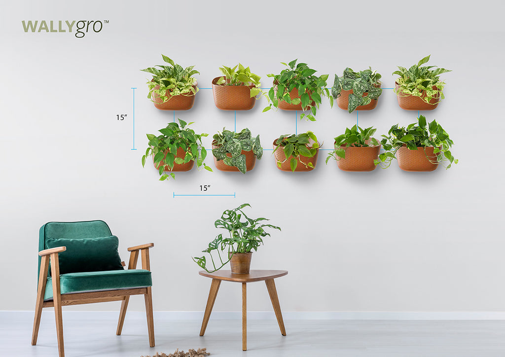 Spaced Horizontal 10: Wally Eco Plant Wall Spacing