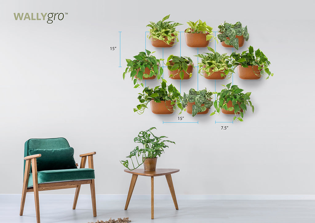 Tight Staggered 10: Wally Eco Plant Wall Spacing