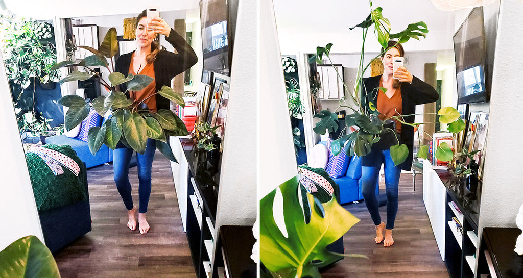 Callie England's large plants in Wally Eco planters