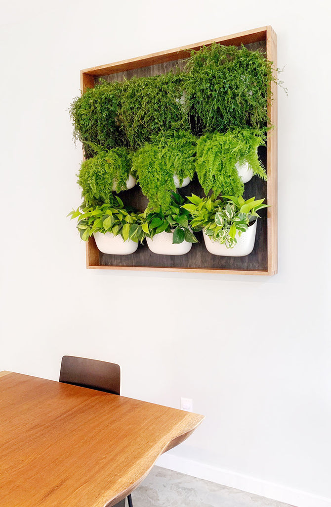 Framed Vertical Garden using Wally Eco planters in White