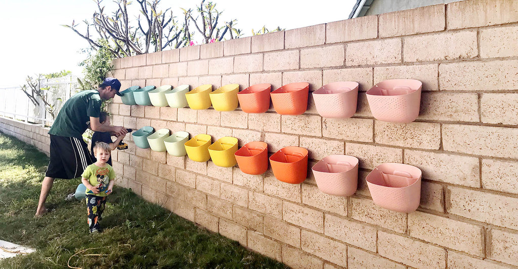 Planting the rainbow Wally Eco plant wall together as a family