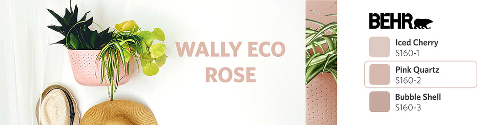 Rose Wally Eco