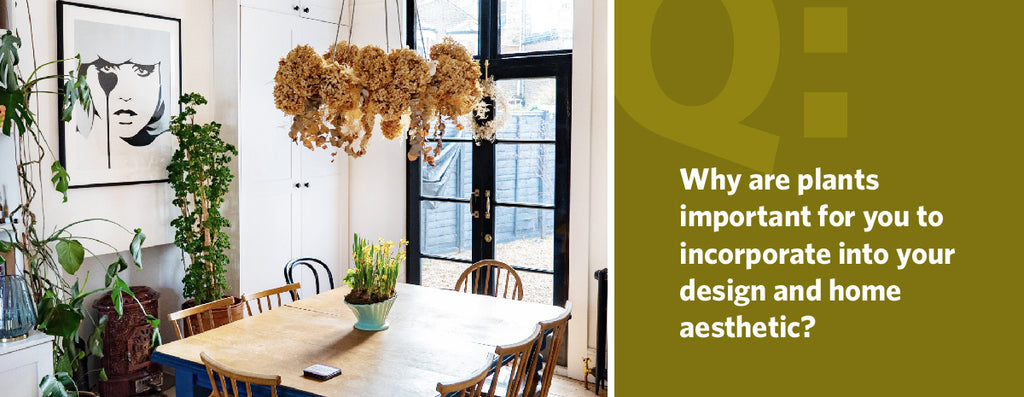 Why are plants important for you to incorporate into your design and home aesthetic?