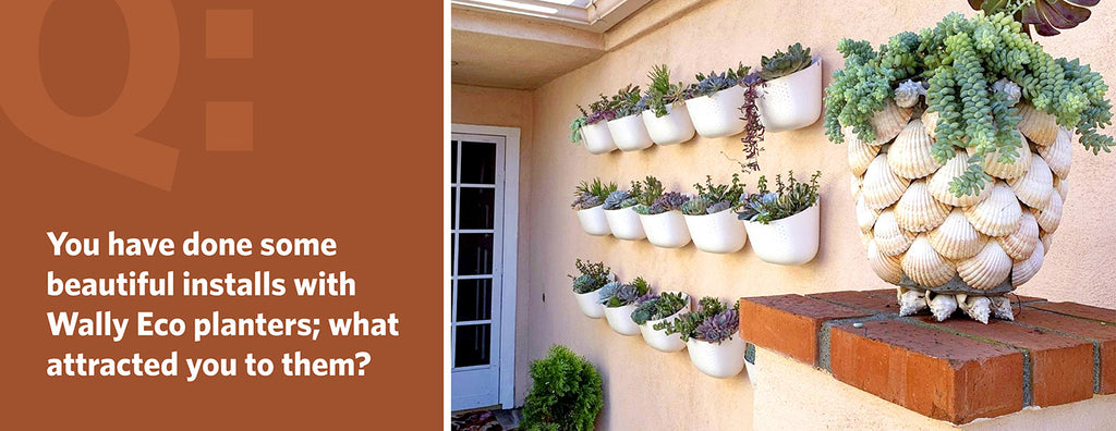 You have done some beautiful installs with Wally Eco planters; what attracted you to them?