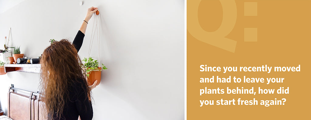 Since you recently moved and had to leave your plants behind, how did you start fresh again?