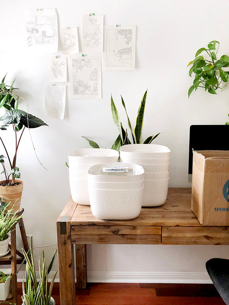 Wally Eco planters out of the box